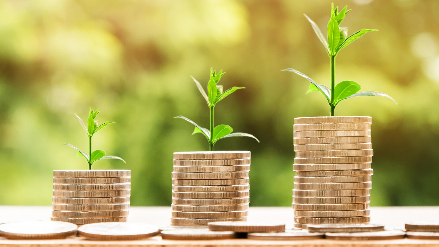 9 Timeless core Investing principles to grow your wealth effortlessly